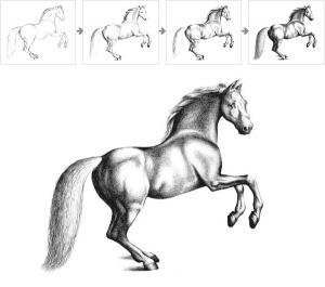 iterative-horse